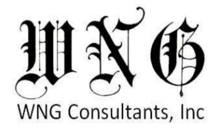 WNG consultants logo